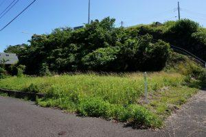 富士見ヶ丘Z-2 敷地 遊歩道