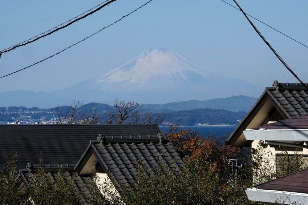 マリンZ41 眺望 富士山