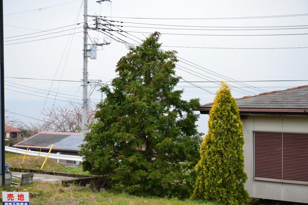 富士見ヶ丘別荘地 Z-7 眺望 海