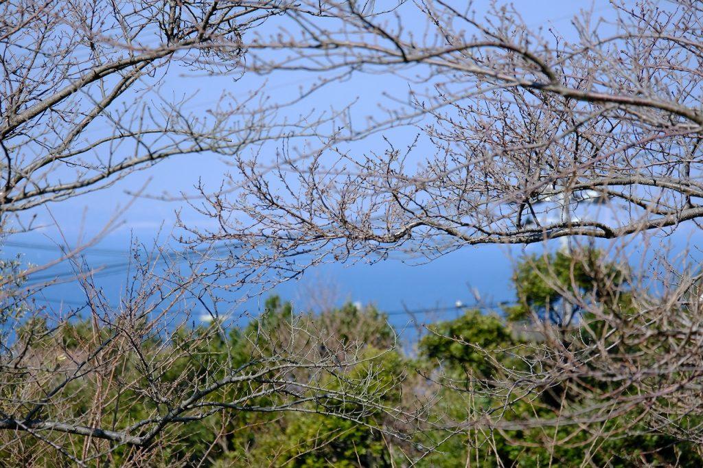 富士見ヶ丘Z-14