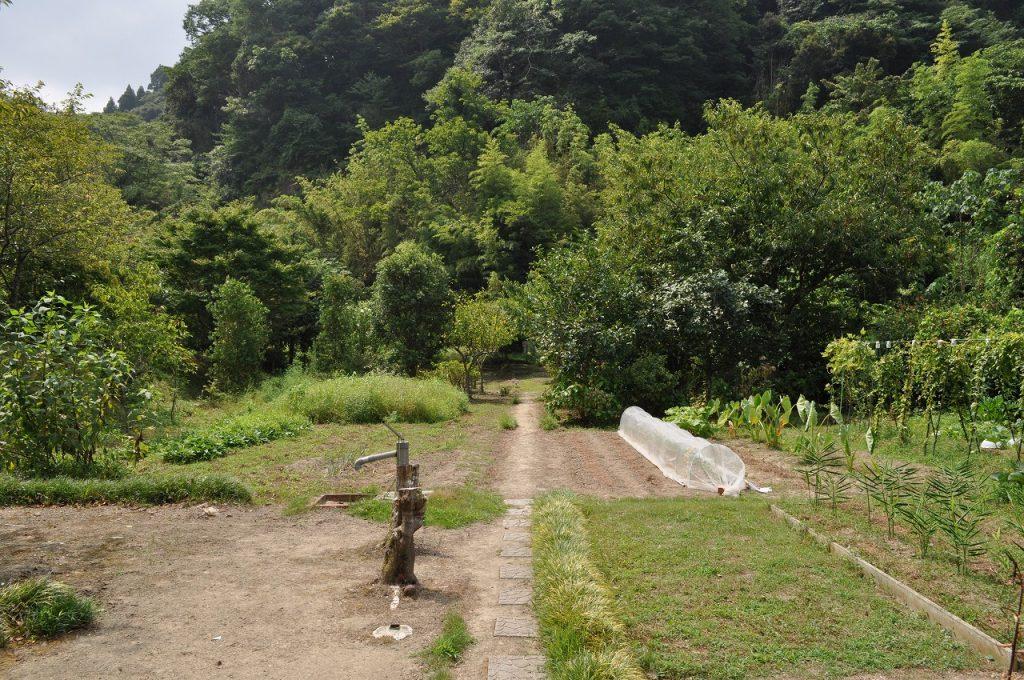 市井原山の家