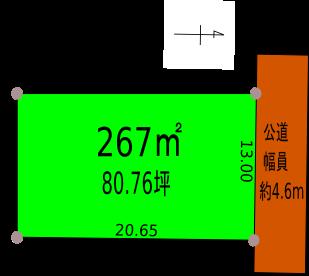 マリンZ-79